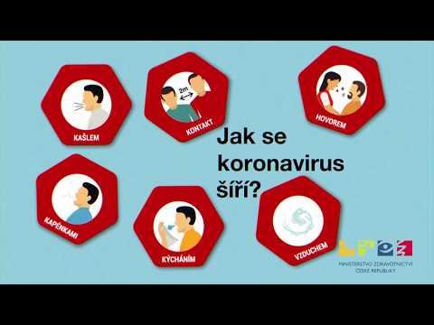 Co byste měli vědět o koronaviru?