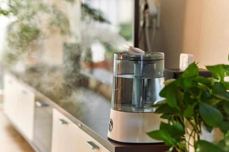 Ako vybrať kvalitný zvlhčovač vzduchu