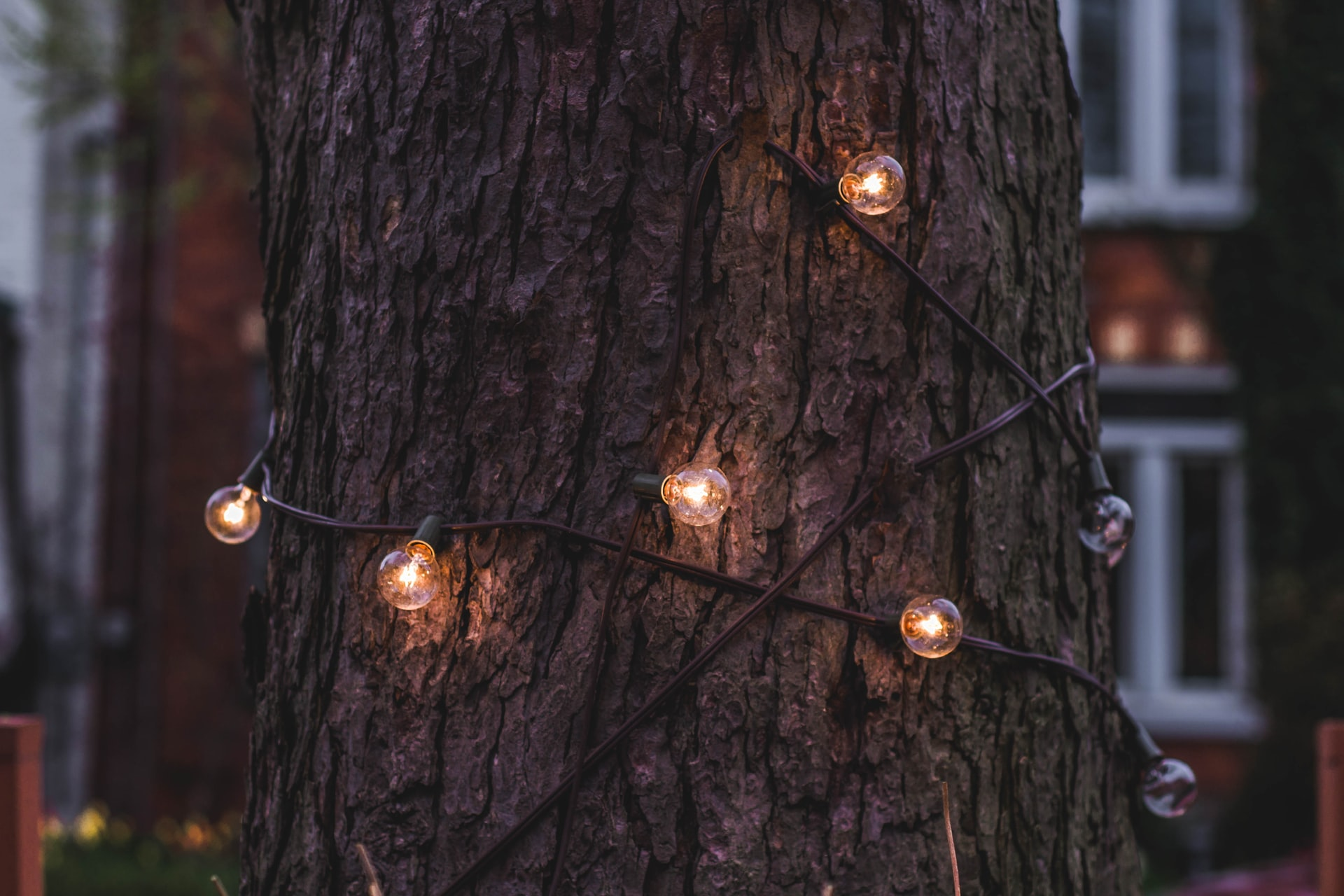 vyberomat sk garden lights